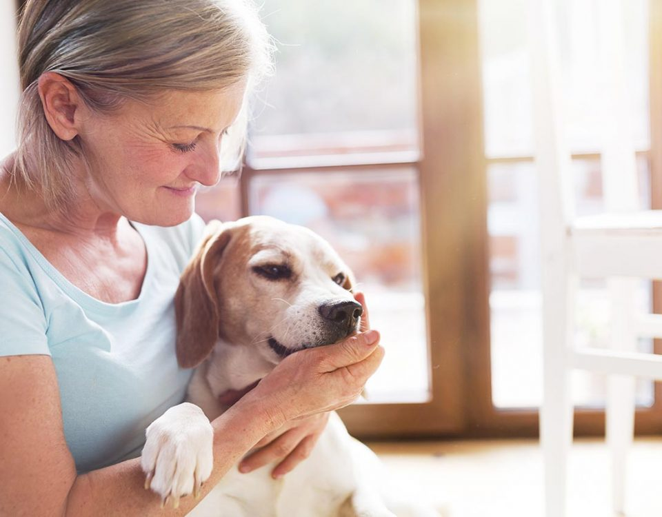 Using Pet Therapy for Depression